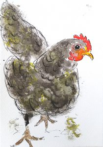 Sort høne (34,4x44,4 cm - SOLGT)